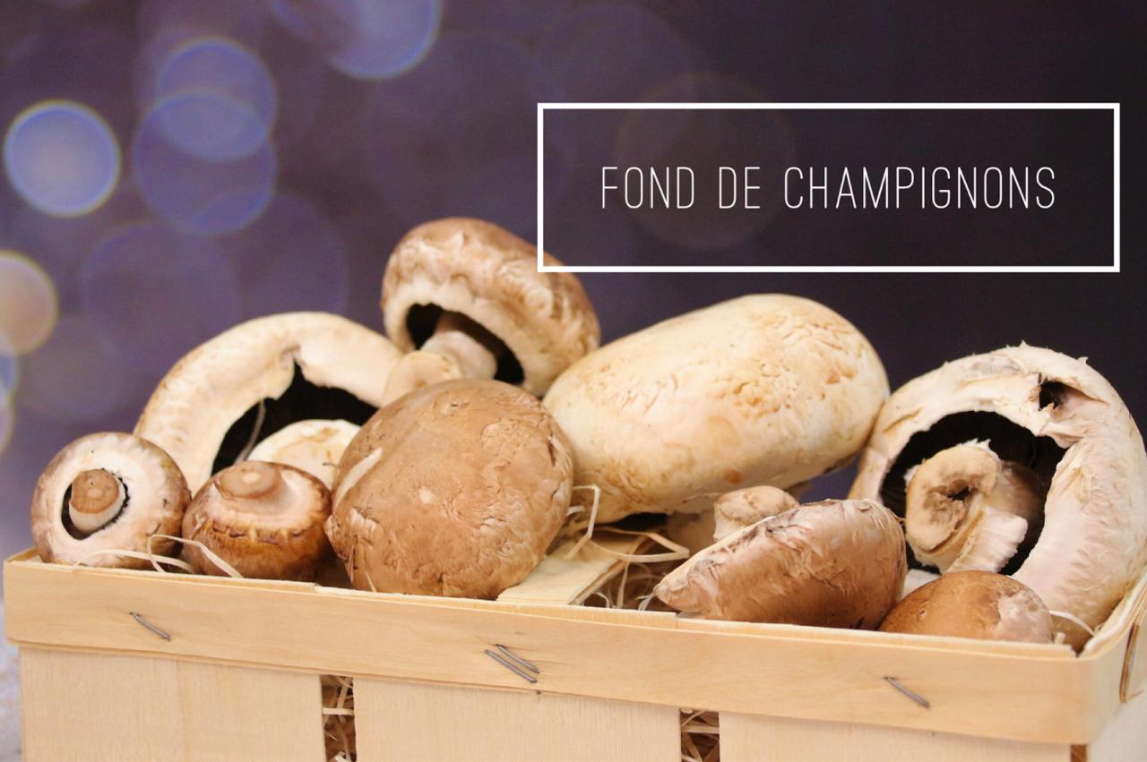 <i class='fas fa-user-lock' aria-hidden='true'></i> Fond de champignons